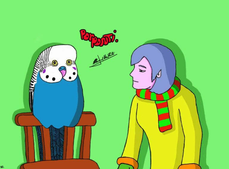 Small… budgie…